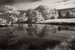 Helmingham Lake and Church